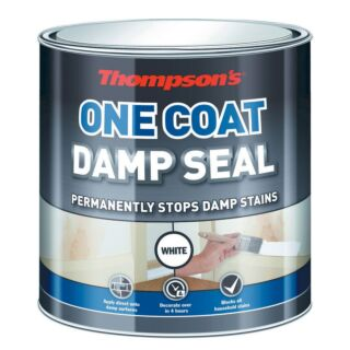 Thompsons One Coat Damp Seal Paint